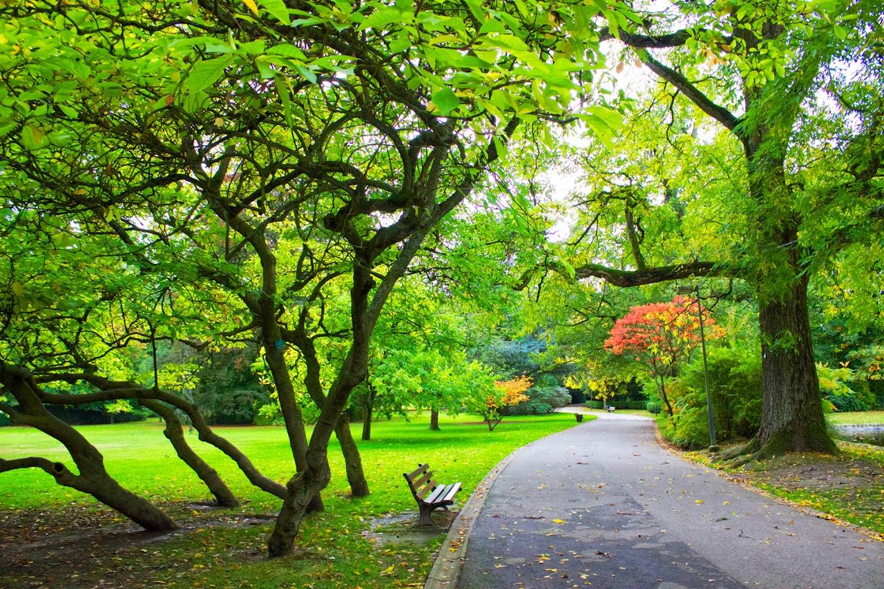 1-paysage-parc-mariemont