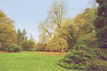 19-paysage-mariemont