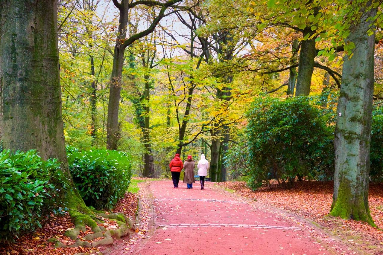 2-paysage-parc-mariemont