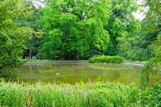à la suite du premier étang